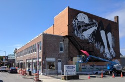 artist muralist Alex Senna of Sao Paulo Brazil_Beverly Mass_new murals commissioned for Cabot building_20190719 ©c ryan (1)