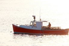 Stanley Thomas Lobster Boat copyright Kim Smith - 8