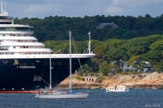 Cruiseship Gloucester Harbor Holland America -3 copyright Kim Smith