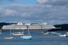 Cruiseship Gloucester Harbor Holland America -4 copyright Kim Smith