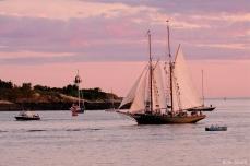 Schooner Festival Gloucester Parade of Sail copyright Kim Smith - 16 copy