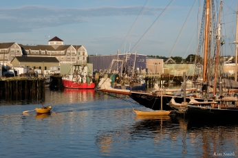 Schooner Festival Gloucester Parade of Sail copyright Kim Smith - 30 copy
