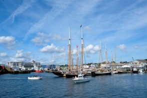Schooner Festival Gloucester Parade of Sail copyright Kim Smith - 34