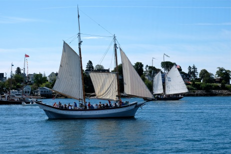 Schooner Festival Gloucester Parade of Sail copyright Kim Smith - 36