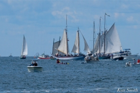 Schooner Festival Gloucester Parade of Sail copyright Kim Smith - 54 copy