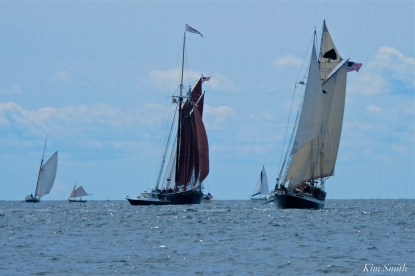 Schooner Festival Gloucester Parade of Sail copyright Kim Smith - 56 copy
