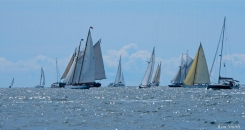 Schooner Festival Gloucester Parade of Sail copyright Kim Smith - 58 copy