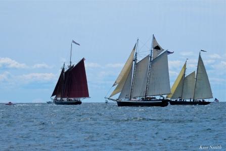 Schooner Festival Gloucester Parade of Sail copyright Kim Smith - 60 copy