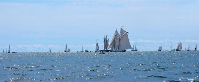 Schooner Festival Gloucester Parade of Sail copyright Kim Smith - 68 copy