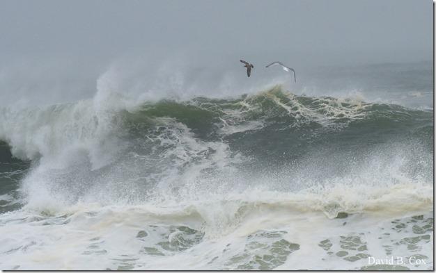 2019 10 12 Storm Surf & Blvd 016