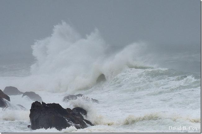 2019 10 12 Storm Surf & Blvd 036