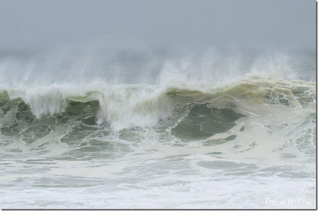 2019 10 12 Storm Surf & Blvd 041