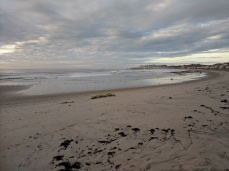 after the storm lobster traps deposited Long Beach like ship wreck_20191013_© c ryan (1)