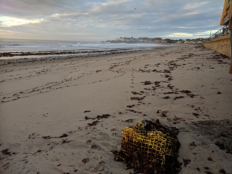 after the storm lobster traps deposited Long Beach like ship wreck_20191013_© c ryan (2)