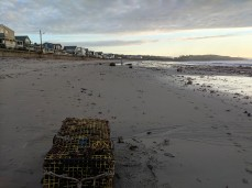 after the storm lobster traps deposited Long Beach like ship wreck_20191013_© c ryan (3)