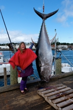 Bluefin Tuna Michelle Anderson Gloucester Massachusetts copyright Kim Smith - 09