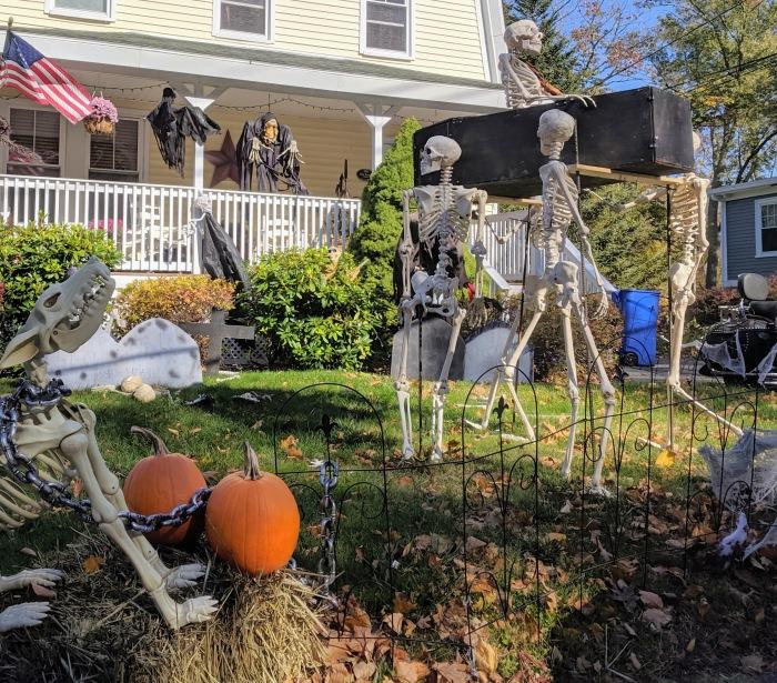 halloween spirit_Gloucester MA front yard_20191024_©c ryan.jpg