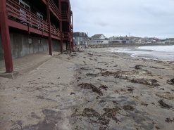 high tide mark on Long Beach_Storm waves day 2_20191011_Gloucester MA ©c ryan