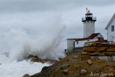 NOR'EASTER October Eastern Point Lighthouse Gloucester Massachusetts copyright Kim Smith - 12