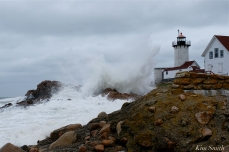 NOR'EASTER October Eastern point Lighthouse Gloucester Massachusetts copyright Kim Smith - 13