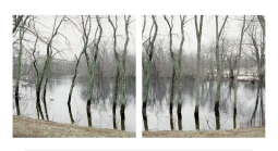 courtesy photo Jane Deering Gallery_Concord_River_Looking_South_12.28.08