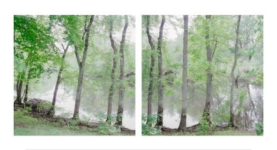 Sally Gregg . Concord River, Looking South 05.28.09 . Archival pigment print . 17x34.5 inchesjpg