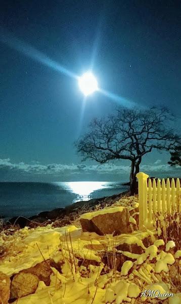 Back Beach full moon