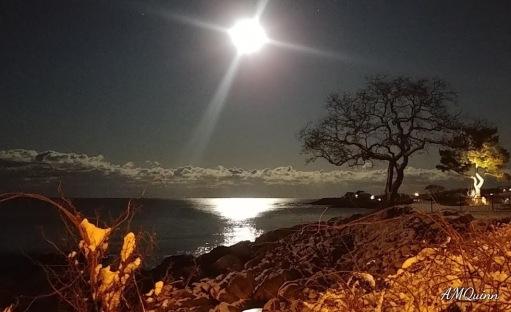 full moon back beach