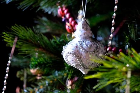 Hammond Castle Christmas Gloucester Massachusetts copyright Kim Smith - 23