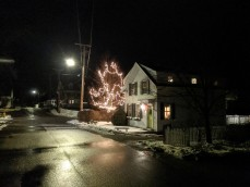 Holiday lights Christmas 2019 Gloucester Mass_20191205_©c ryan (3)