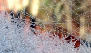 IceCrystals12'19_0825_edited-1