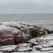 like molasses crinkles_light snow dusting coastal rocks_20191218_Gloucester Ma ©c ryan (2)