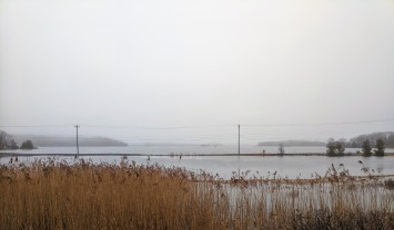view across great marsh by Lobsta Land_high winter tides_Gloucester MA._20191214_©c ryan (3)