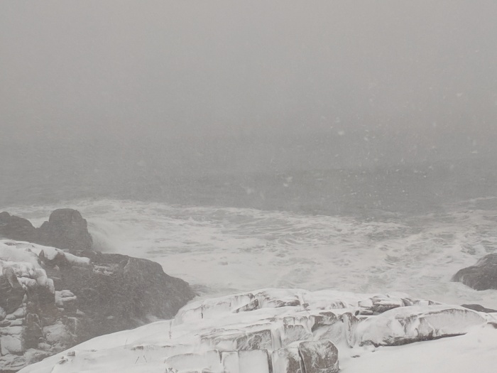 winter storm_20191203_Gloucester MA ©c ryan.jpg