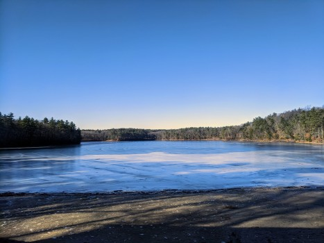 Walden Pond_20200126_winter morning_Concord Massachusetts photograph © c ryan (4)