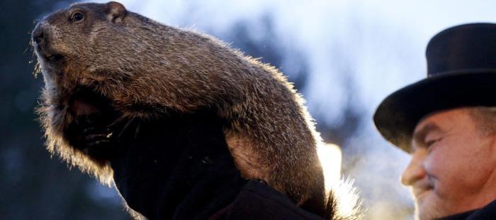 Groundhog-Day_AP