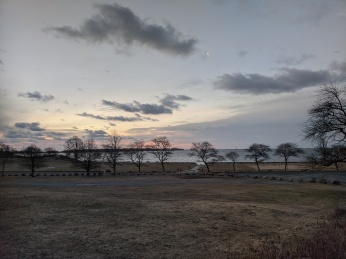 pink sky grey clouds winter trees_February morning Stage Fort Park Gloucester Mass photograph ©c ryan