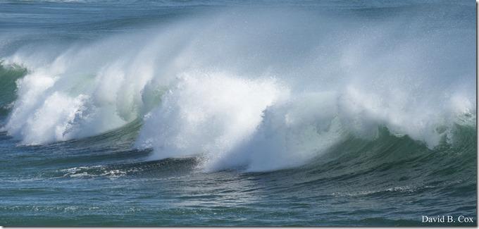 2020 3 25 Bk Sh Surf & Eve Lighting 024