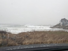 super high tide April 3 2020_Long Beach Gloucester Mass end ©c ryan (2)