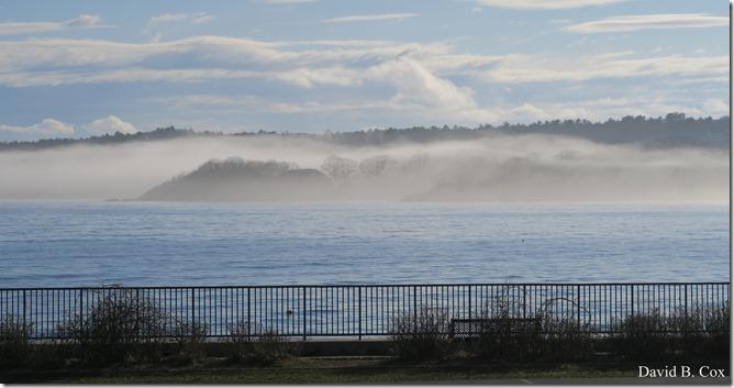 2020 5 2 cannon misc Blvd fog 019