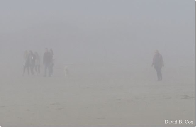 2020 5 2 cannon misc Blvd fog 036