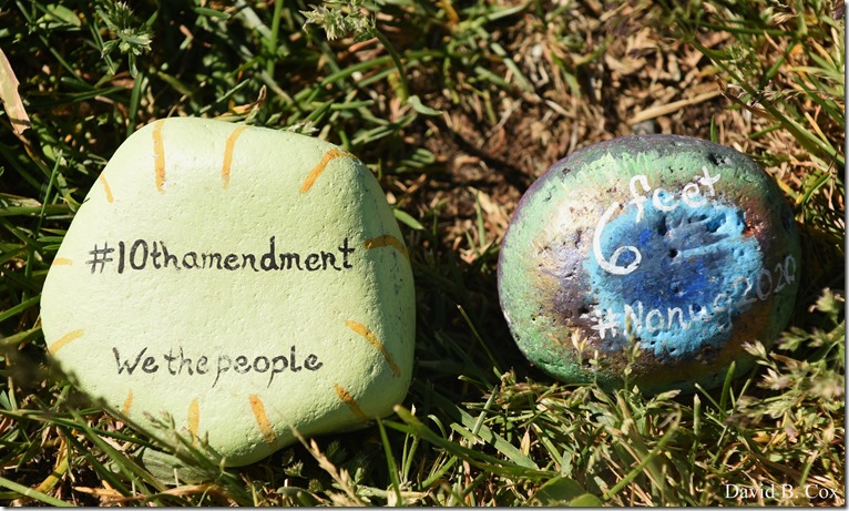 2020 6 1 Blvd painted Rocks & Protest At Rotary 009