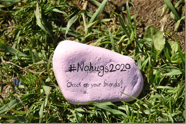 2020 6 1 Blvd painted Rocks & Protest At Rotary 018