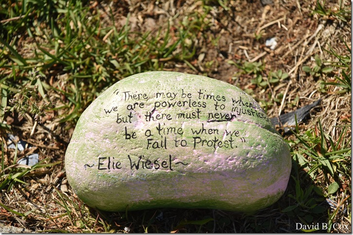 2020 6 1 Blvd painted Rocks & Protest At Rotary 039