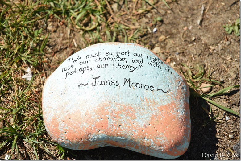 2020 6 1 Blvd painted Rocks & Protest At Rotary 041