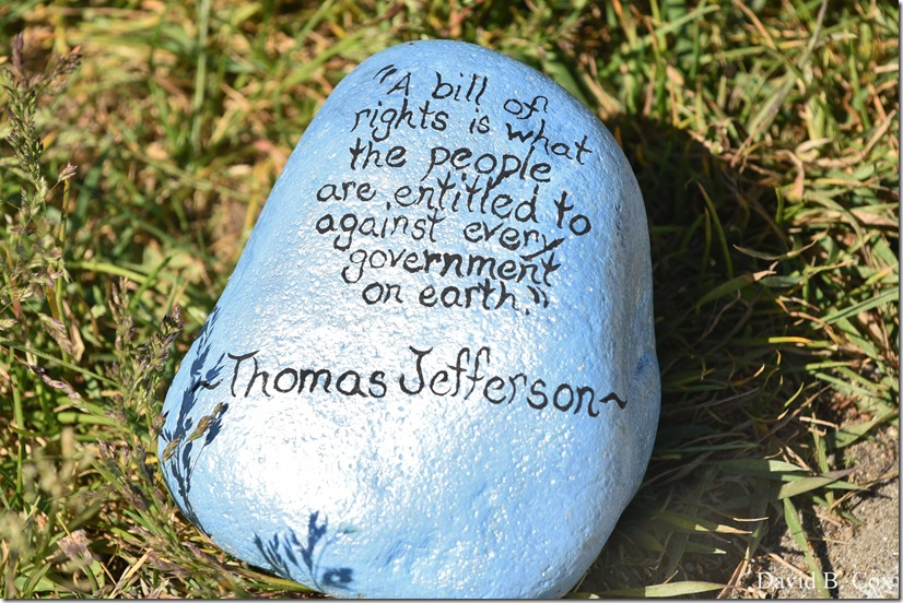 2020 6 1 Blvd painted Rocks & Protest At Rotary 052