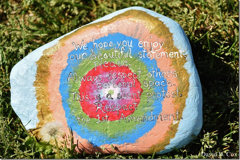 2020 6 1 Blvd painted Rocks & Protest At Rotary 056