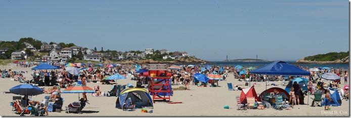 2020 6 20 Walks & G H Beach 194