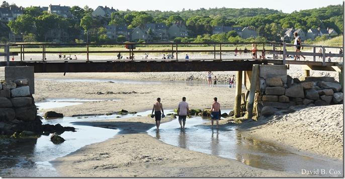 2020 6 20 Walks & G H Beach 212