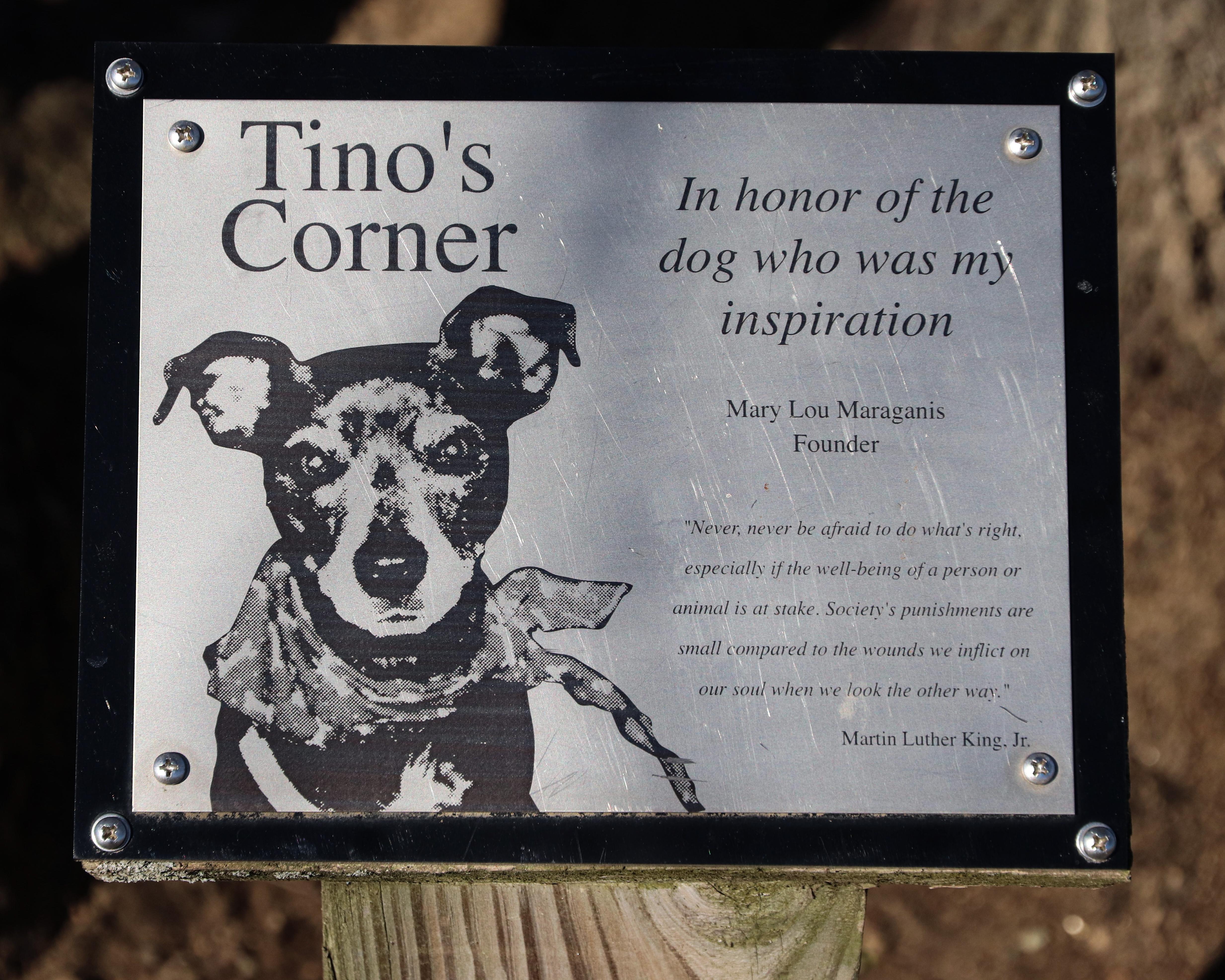 Tino's Corner